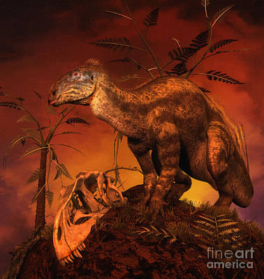 Tenontosaurus Was An Ornithopod Poster by Philip Brownlow
