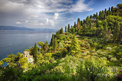 Terraced Hillside Of Portofino Poster by George Oze