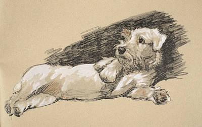 Terrier Detail, 1930, Illustrations Poster