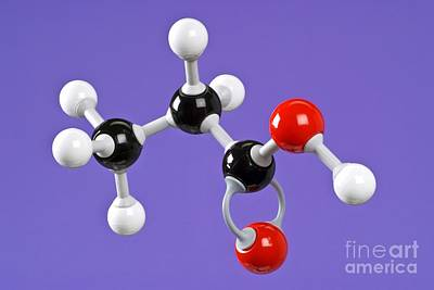 Propanoic Acid Poster by Martyn F. Chillmaid