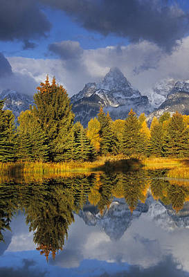 Tetons And Pond Poster