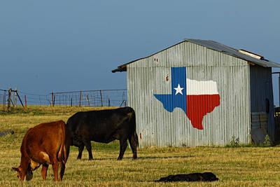 Texas Farm With Texas Logo Poster