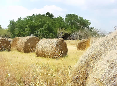 Texas Hay Bales Stylized Poster by Linda Phelps