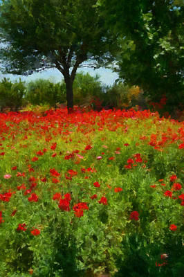 Texas Hill Country Corn Poppies Poster by Michael Flood