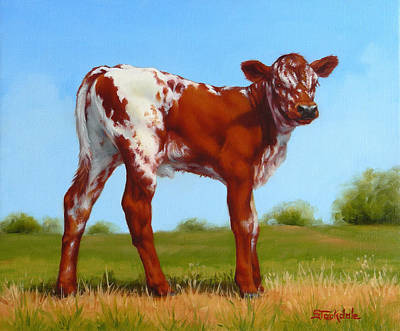 Poster featuring the painting Texas Longhorn New Calf by Margaret Stockdale