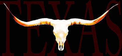 Texas Longhorns By Sharon Cummings Poster