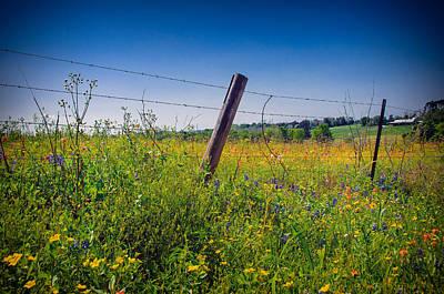 Poster featuring the photograph Texas Spring Fling by Allen Biedrzycki