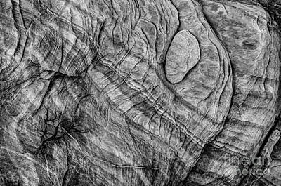 Textured Sandstone - Black And White - Valley Of Fire Poster by Gary Whitton