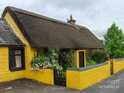 Thatched House Ireland Poster by Brenda Brown
