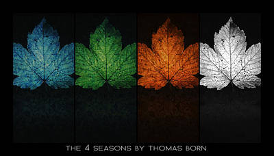 Poster featuring the photograph The 4 Seasons By Thomas Born by Thomas Born