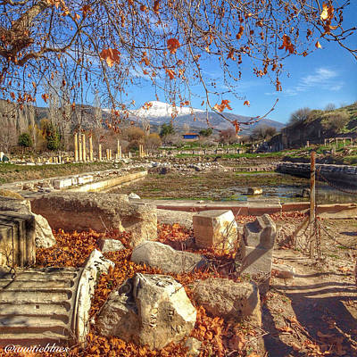 The Agora At Aphrodisias Poster by Auntieblues