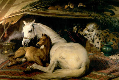 The Arab Tent Poster by Sir Edwin Landseer