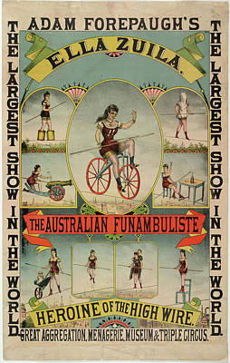 The Australian Funambulist. Poster