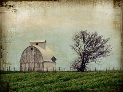 The Barn And Tree Poster by Cassie Peters
