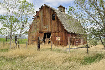 Poster featuring the photograph the Barn  by Fran Riley