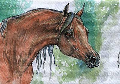 The Bay Arabian Horse 6 Poster by Angel  Tarantella
