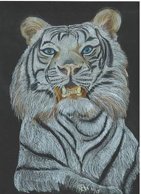 Poster featuring the pastel The Bengal by Carol Wisniewski