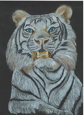 The Bengal Poster by Carol Wisniewski