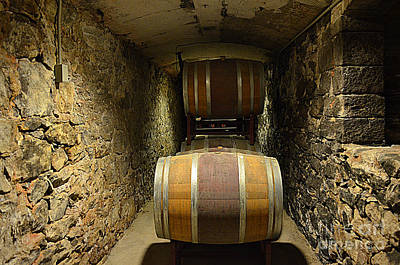 The Biltmore Estate Wine Barrels Poster by Luther Fine Art