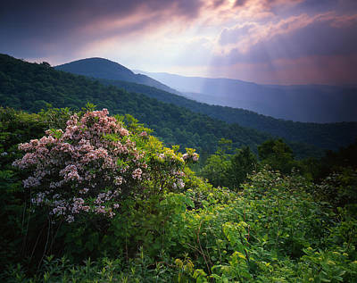 The Blue Ridge Parkway Poster by Ray Mathis