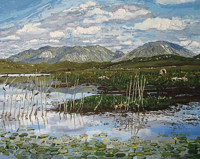 The Bog Road Roundstone Connemara Poster by Diana Shephard