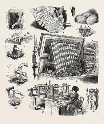 The Brazilian Silk Worm Exhibit, Philadelphia Exhibition Poster