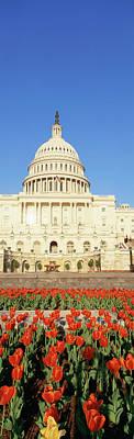 The Capitol & Tulip Garden, Washington Poster