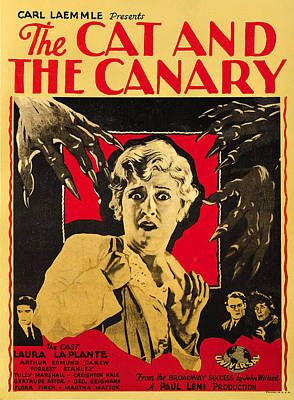 The Cat And The Canary Poster by Universal