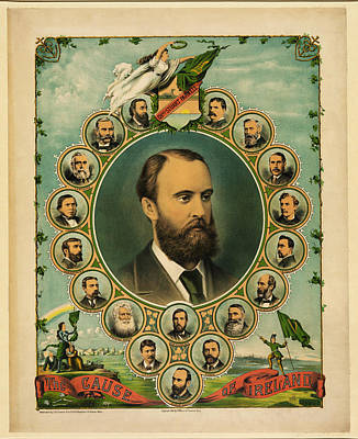 The Cause Of Ireland 1881 Poster by Bill Cannon
