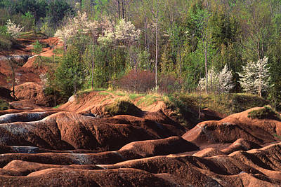 Poster featuring the photograph The Cheltenham Badlands by Gary Hall