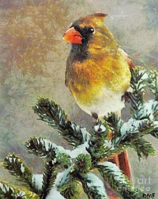The Christmas Cardinal Poster by Dragica  Micki Fortuna