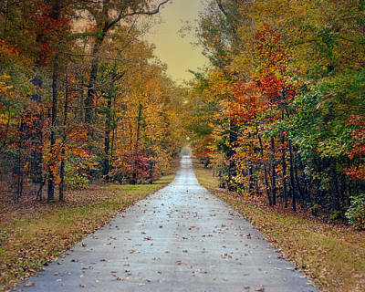 The Colors Of Fall - Autumn Landscape Poster by Jai Johnson