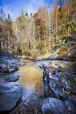 The Creek Poster by Debra and Dave Vanderlaan