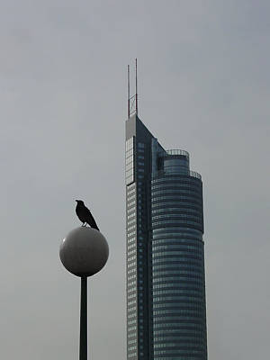 The Crow And The Milleniumtower In Winter Poster