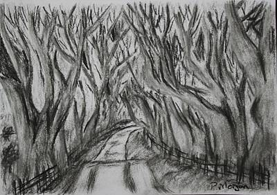 The Dark Hedges Poster by Paul Morgan