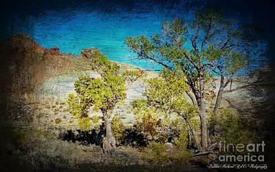 The Desert Poster by Bobbee Rickard