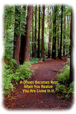 Poster featuring the photograph The Dream Is Real Again by Ben Upham III