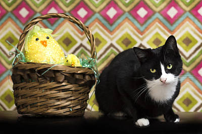 The Easter Tiggy Poster