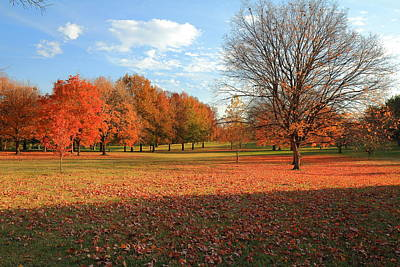 Poster featuring the photograph The End Of Autumn In Francis Park by Scott Rackers