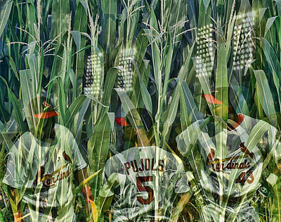 The Field Poster by John Freidenberg