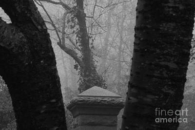 Poster featuring the photograph The Fog by Steven Macanka