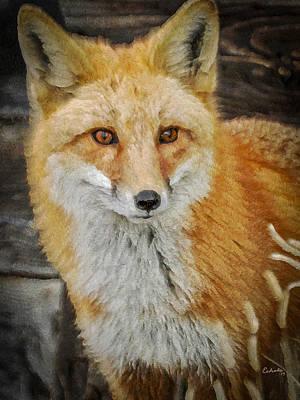 The Fox 8 Poster by Ernie Echols