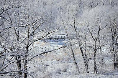 The Frozen Bridge Poster by Maria Angelica Maira