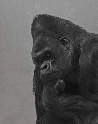 The Gorilla Poster by Ernie Echols