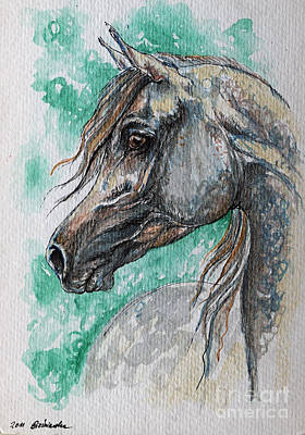 The Grey Arabian Horse 13 Poster by Angel  Tarantella