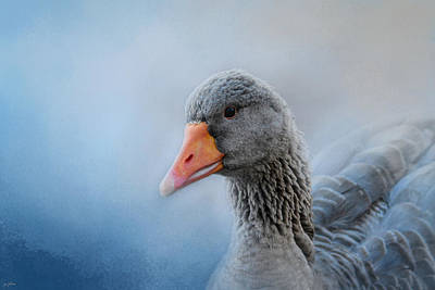 The Greylag Goose Poster by Jai Johnson