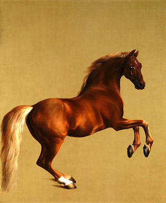 Poster featuring the digital art The Horse by George Stubbs