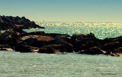 The Jetties Poster by Debra Forand