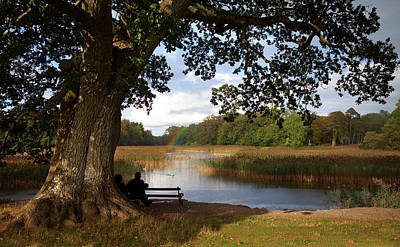 The Lake At Emo Court, Emo Village Poster by Panoramic Images