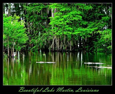 The Lake Martin Habitat Poster by Kimo Fernandez